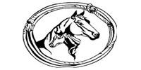 R & J Horse Sales